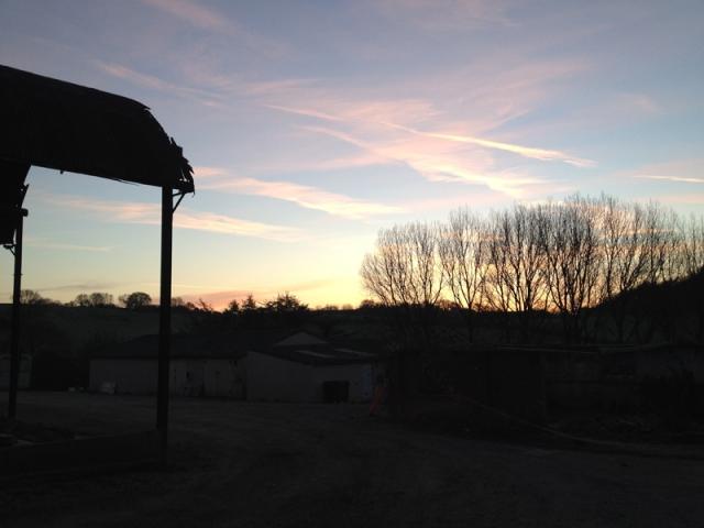 david before sunrise