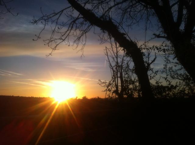 ivon sunrise